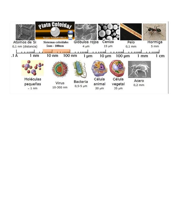 CSI al nano-laboratori: vine a resoldre un enigma amb Nanoscopia