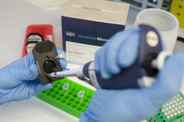 El genoma en un microxip